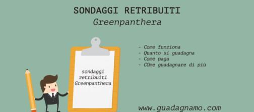 Greenpanthera-opinioni-funziona